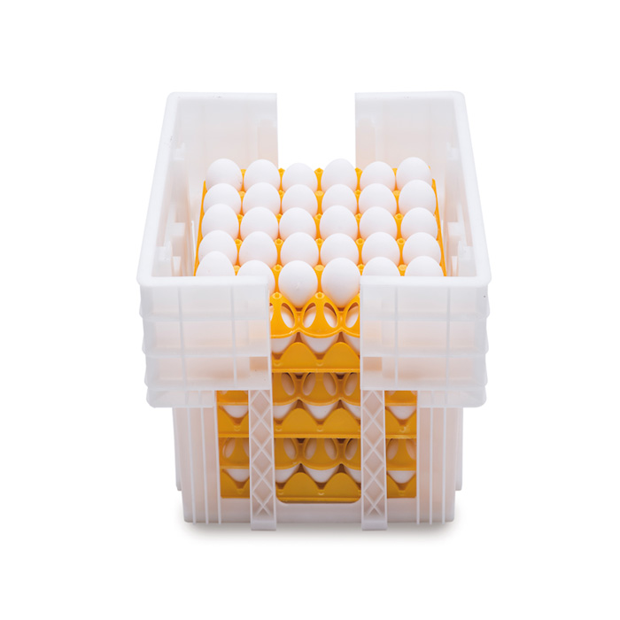Plastic eggs crates Ovobox 180
