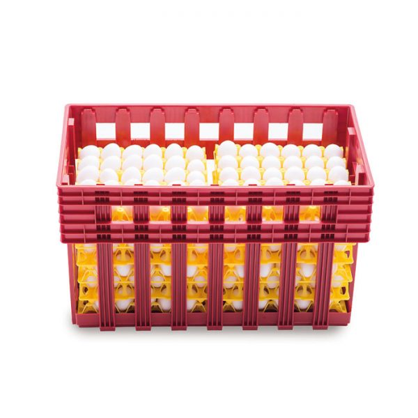 Plastic egg crates Ovobox