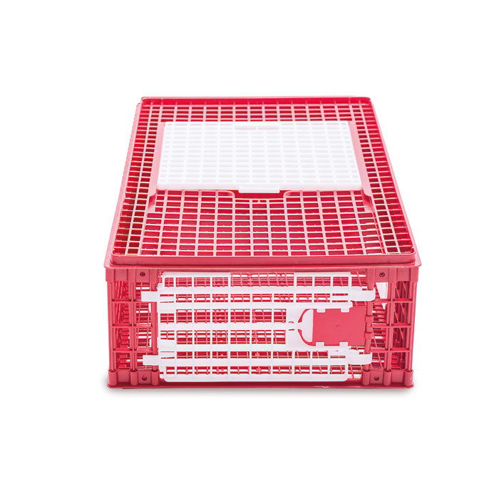 Frontside chickens transport cage