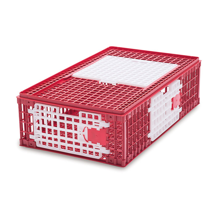 Chickens transport cage Model A