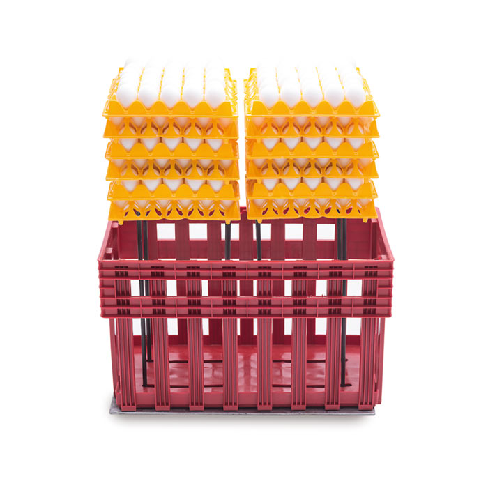 Platform Eggs T for plastic egg crates Ovobox