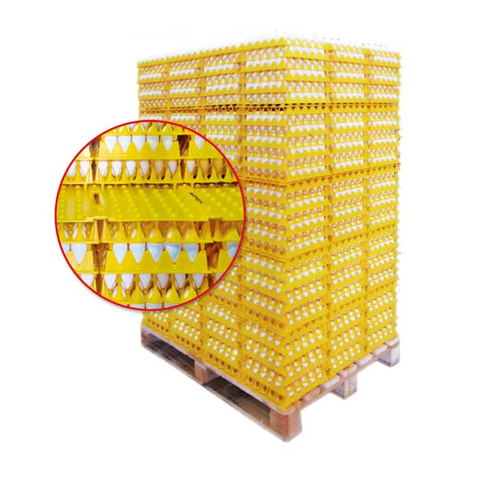 Pallet compound with Arion's pallets and dividers