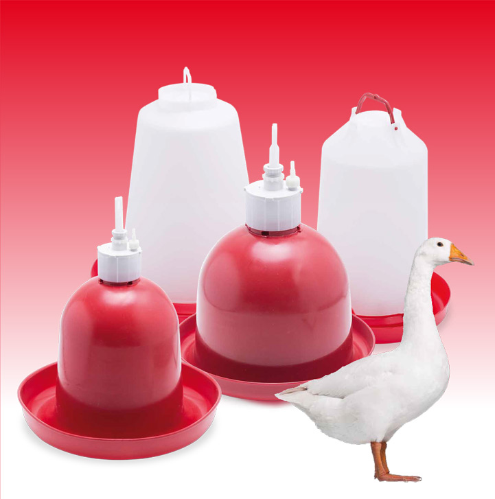 Plastic poultry drinkers