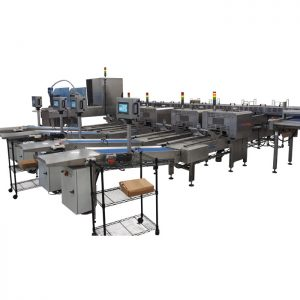 Electronic egg grader E20 with four packaging lines
